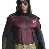 Adult Robin Arkham City Costume