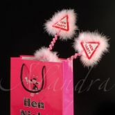 Goodie Bags Hen Night