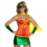 Adult Robin Sexy Super Hero Costume rubys