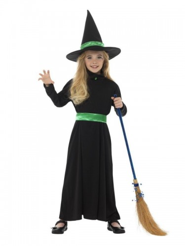 Wicked Witch Costume  (Example Photo)