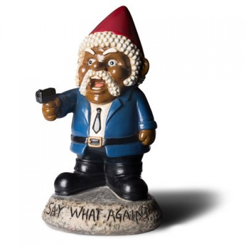 Say What Again? Garden Gnome (Example Photo)