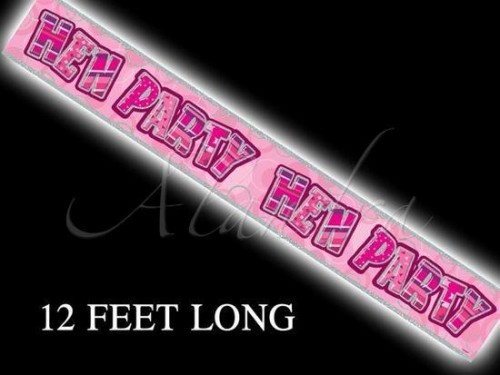 Pink Hen Party Banner (Example Photo)