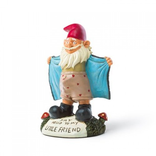 Perverted Flasher Garden Gnome Statue (Example Photo)