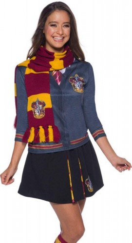 Harry Potter Gryffindor Deluxe Scarf, Costume  (Example Photo)