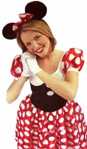 Minnie Mouse Adult Disney Costume (Example Photo)