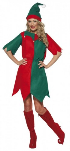 Miss Elf Adult Costume (Example Photo)