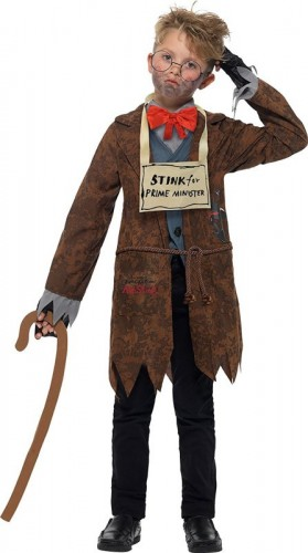David Walliams Deluxe Mr Stink Costume (Example Photo)