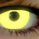 Yellow UV fashion lenses