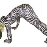 Expecting delivery Morphsuit Zebra - Adult Costume