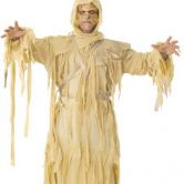 Mummy King Adult  Costume  | Egyptian